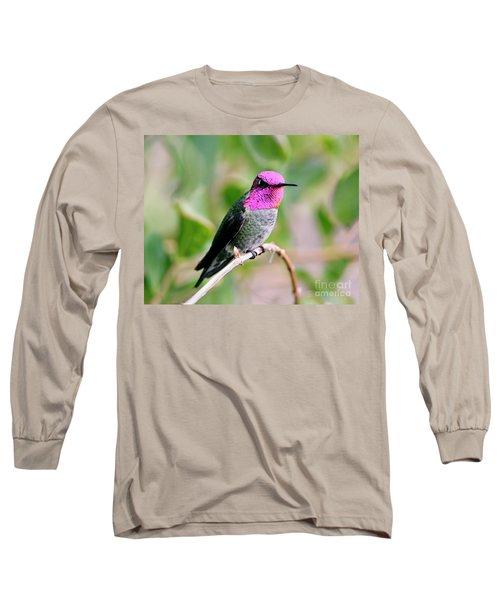 Pretty In Pink Anna's Hummingbird Long Sleeve T-Shirt
