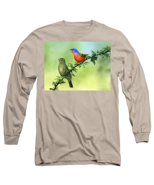 Pretty Painted Buntings Perched Long Sleeve T-Shirt
