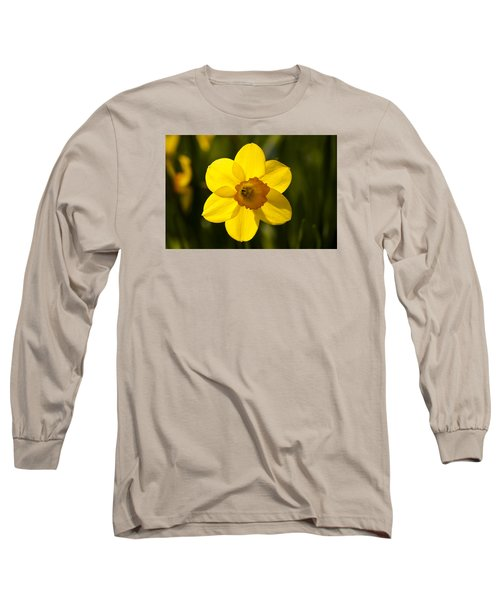 Projecting The Sun Long Sleeve T-Shirt by Dan Hefle