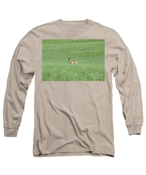 Long Sleeve T-Shirt featuring the photograph Pronghorn In A Sea Of Green by Bill Gabbert