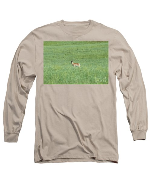 Pronghorn In A Sea Of Green Long Sleeve T-Shirt