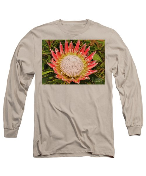 Protea I Long Sleeve T-Shirt by Cassandra Buckley