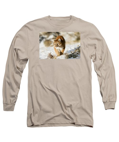 Prowling Mountain Lion Long Sleeve T-Shirt