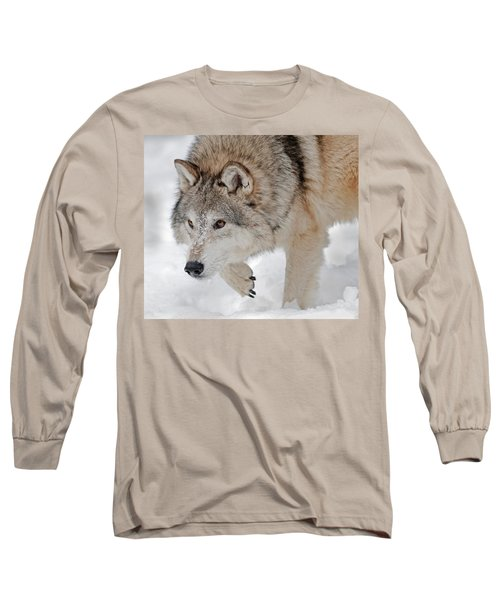 Prowling Wolf Long Sleeve T-Shirt