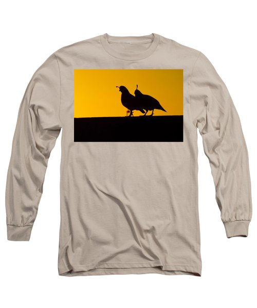 Quail At Sunset Long Sleeve T-Shirt by Judi Saunders