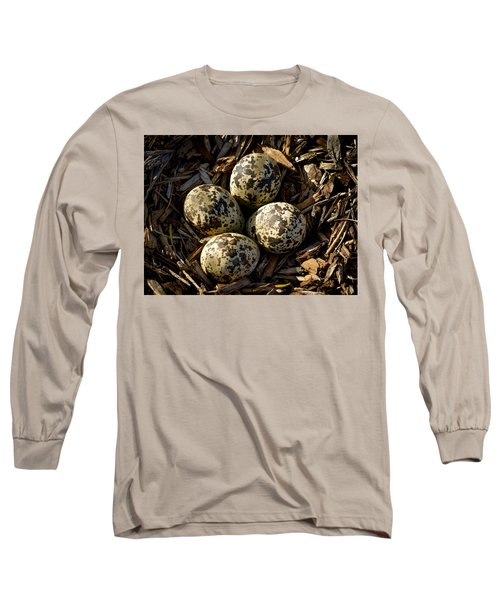 Quartet Of Killdeer Eggs By Jean Noren Long Sleeve T-Shirt by Jean Noren