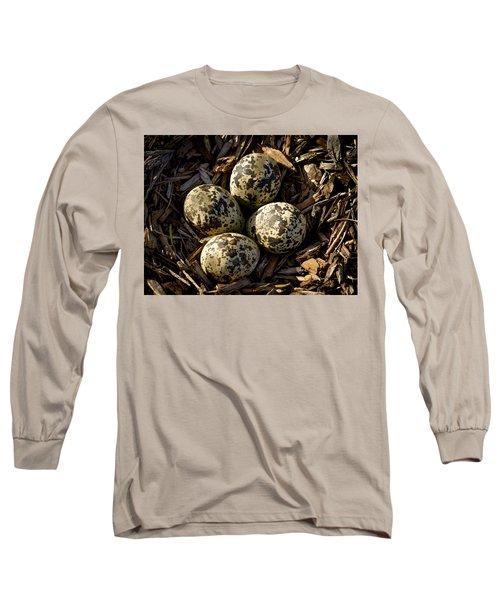 Quartet Of Killdeer Eggs By Jean Noren Long Sleeve T-Shirt