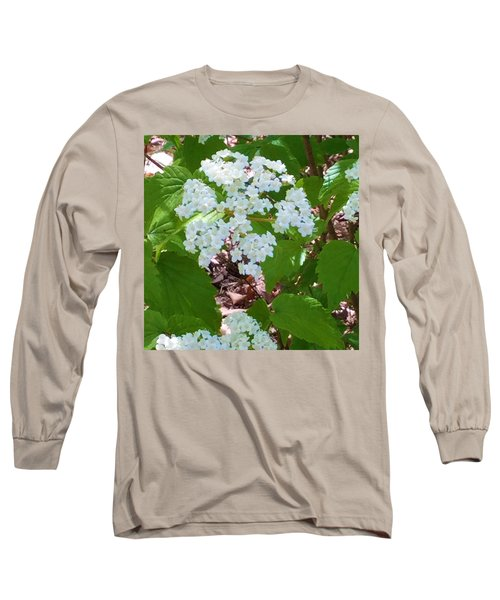 Queen Anne's Lace Long Sleeve T-Shirt by Kay Gilley