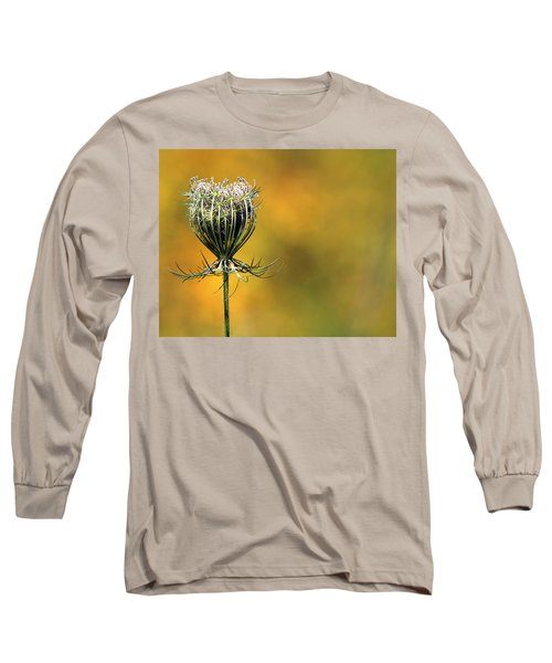 Queen Anne's Lace Stony Brook New York Long Sleeve T-Shirt by Bob Savage