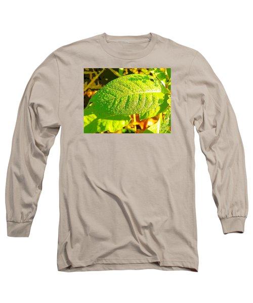Rain On Leaf Long Sleeve T-Shirt