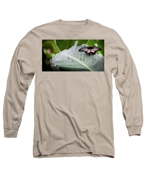 Long Sleeve T-Shirt featuring the photograph Raining Wings by Karen Wiles