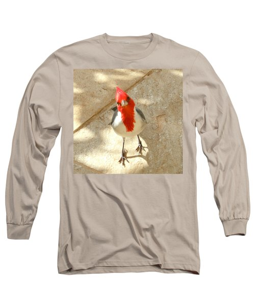 Red-crested Cardinal At My Feet Long Sleeve T-Shirt