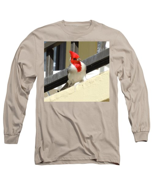Red-crested Cardinal Posing On The Balcony Long Sleeve T-Shirt