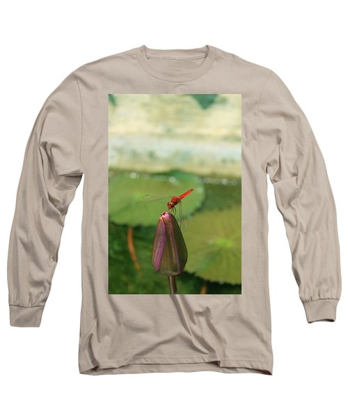 Red Dragonfly At Lady Buddha Long Sleeve T-Shirt