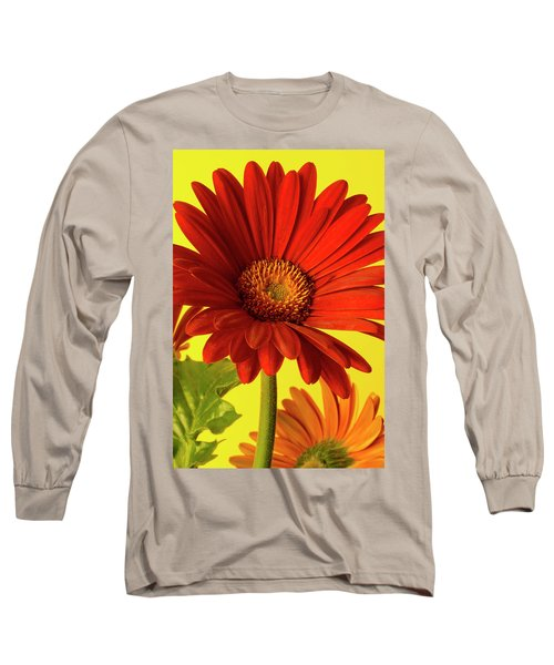 Long Sleeve T-Shirt featuring the photograph Red Gerbera Daisy 2 by Richard Rizzo