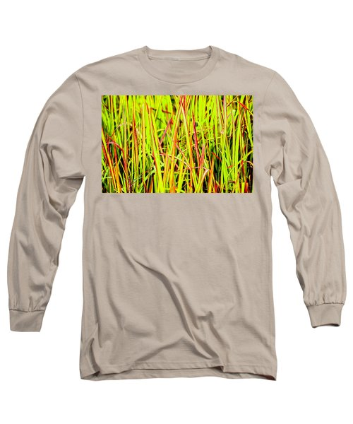 Red Green And Yellow Grass Long Sleeve T-Shirt