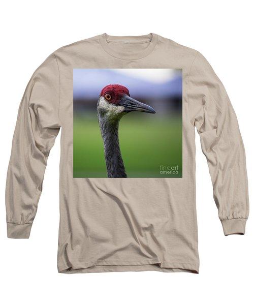 Red Head Bird Long Sleeve T-Shirt
