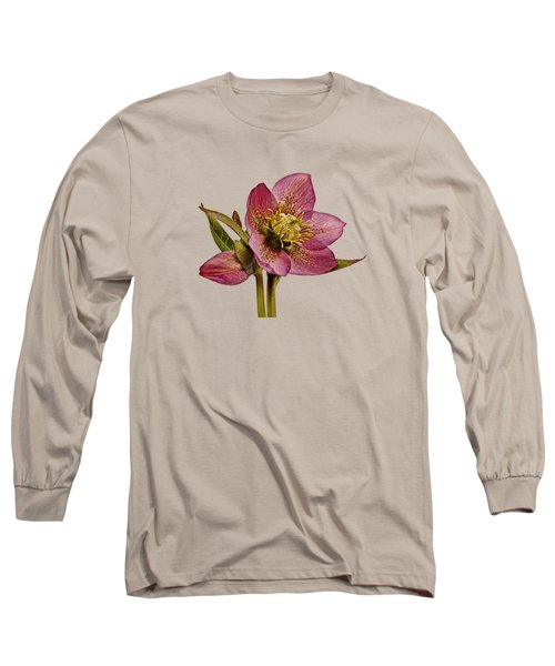 Long Sleeve T-Shirt featuring the photograph Red Hellebore Transparent Background by Paul Gulliver