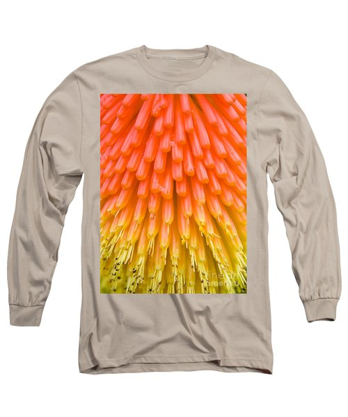 Red Hot Poker Flower Close Up Long Sleeve T-Shirt by Colin Rayner