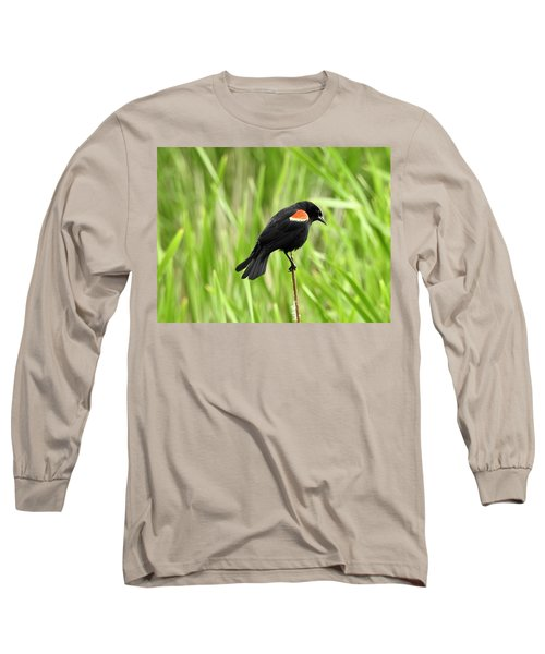 Red-winged Blackbird Long Sleeve T-Shirt by Brian Chase