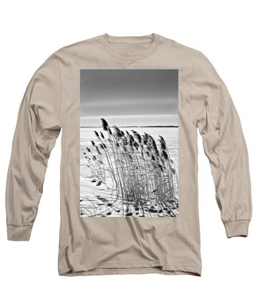 Reeds On A Frozen Lake Long Sleeve T-Shirt