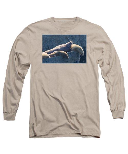 Reflected Glory Long Sleeve T-Shirt by Harold Piskiel