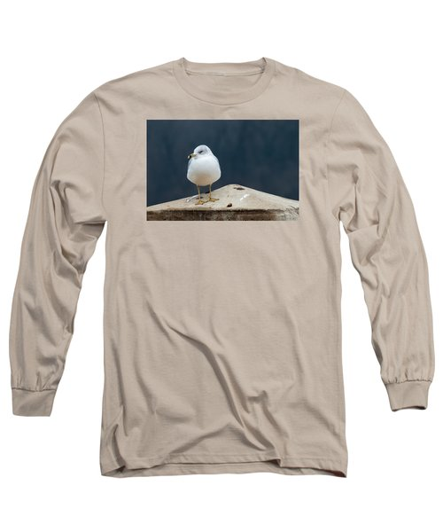 Ring Bill Long Sleeve T-Shirt by Joe Scott