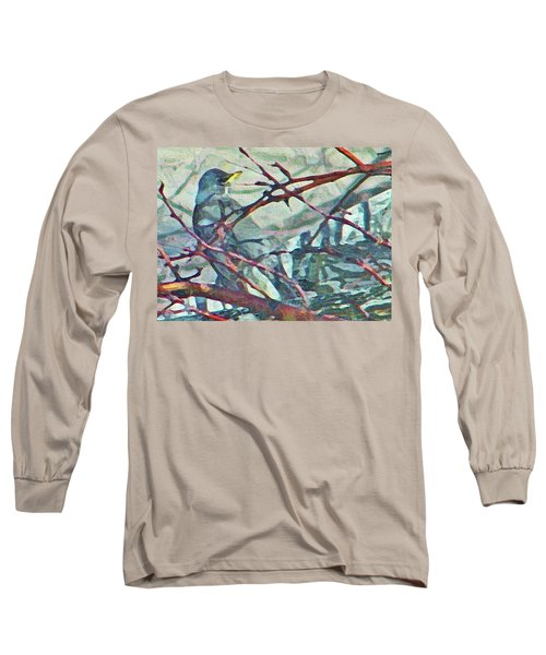 Robins Impression Of Spring Long Sleeve T-Shirt by Lenore Senior