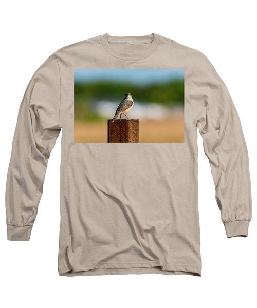 Rock Wren 1 Long Sleeve T-Shirt
