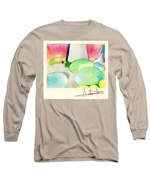 Rocks On Path Long Sleeve T-Shirt