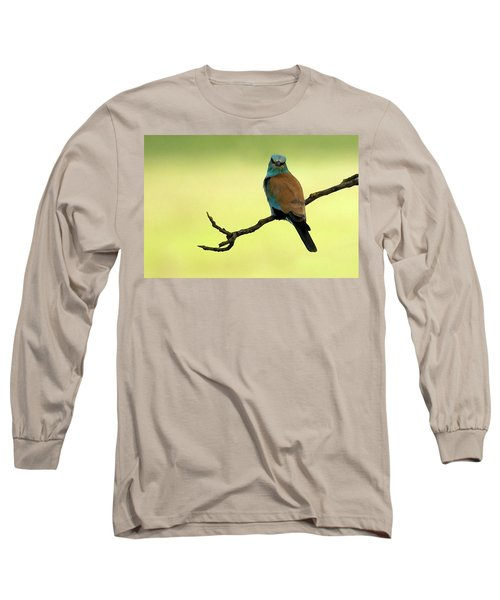 Roller  Long Sleeve T-Shirt