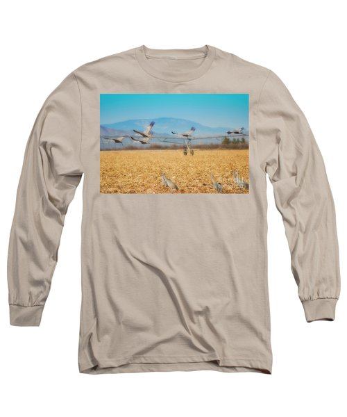Sandhill Cranes In Flight Long Sleeve T-Shirt by Donna Greene