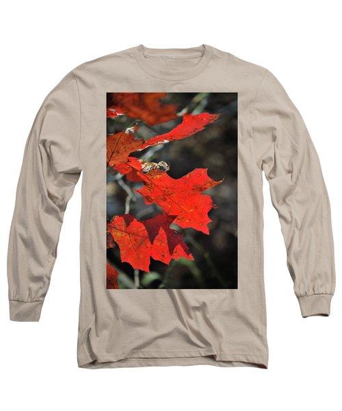 Scarlet Autumn Long Sleeve T-Shirt