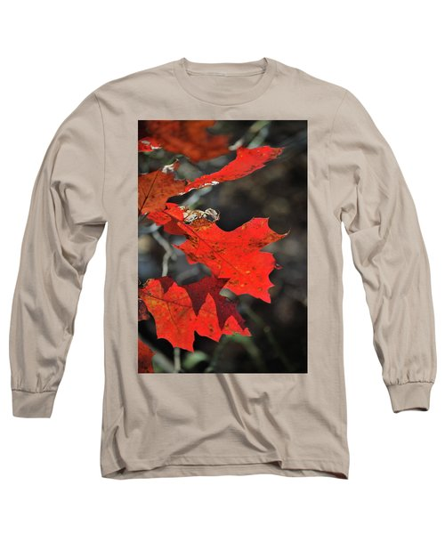 Scarlet Autumn Long Sleeve T-Shirt