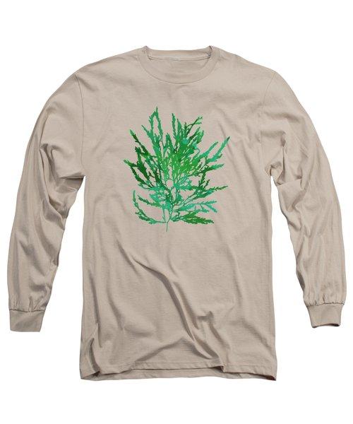 Long Sleeve T-Shirt featuring the mixed media Sea Green Seaweed Art Odonthalia Dentata by Christina Rollo