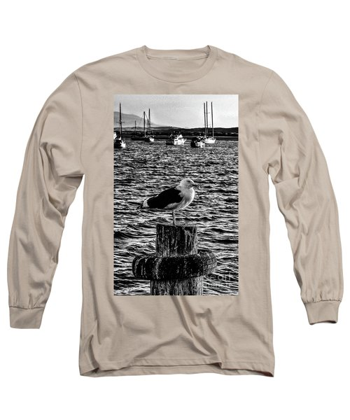 Seagull Perch, Black And White Long Sleeve T-Shirt