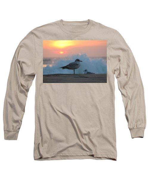 Seagull Seascape Sunrise Long Sleeve T-Shirt