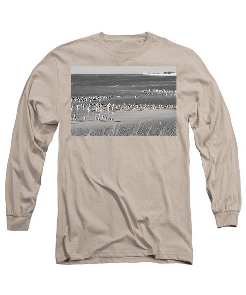 Seascape Gulf Coast, Ms F10v Long Sleeve T-Shirt