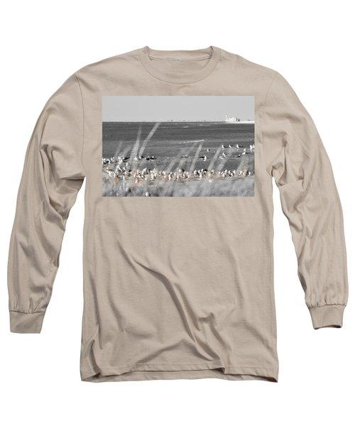 Seascape Gulf Coast, Ms F10w Long Sleeve T-Shirt