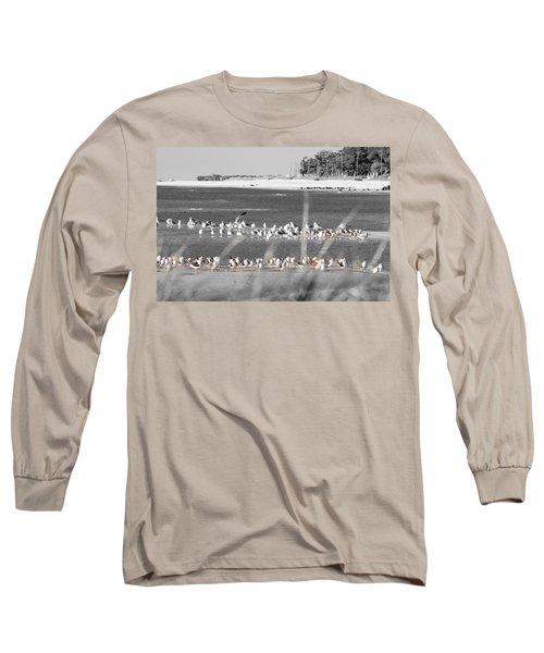 Seascape Gulf Coast, Ms F10y Long Sleeve T-Shirt