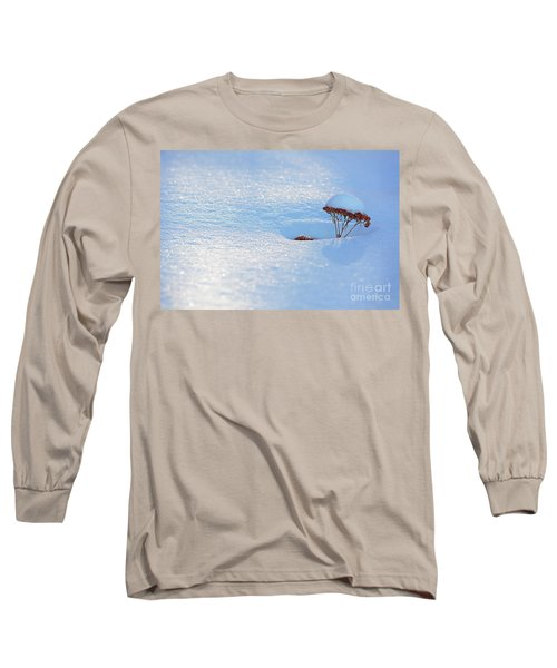 Sedum Sprout In Winter-1 Long Sleeve T-Shirt