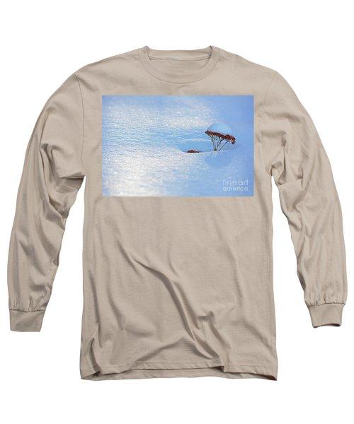 Sedum Sprout In Winter-1 Long Sleeve T-Shirt