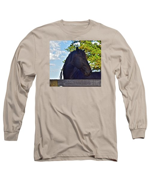 Do You Like My Brade Long Sleeve T-Shirt