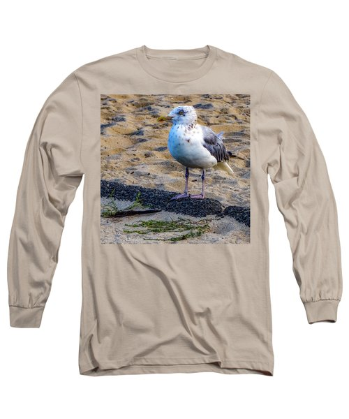 See The Gull Long Sleeve T-Shirt