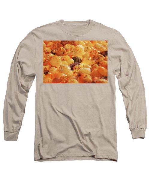 Shells Xvii Long Sleeve T-Shirt by Cassandra Buckley