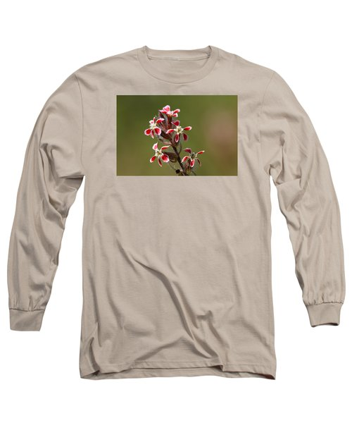 Long Sleeve T-Shirt featuring the photograph Silene by Richard Patmore