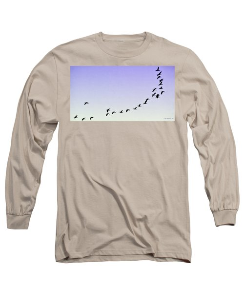 Silhouetted Flight Long Sleeve T-Shirt by Brian Wallace