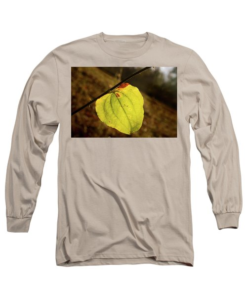 Single Greenbrair Leaf In Evening Sun Long Sleeve T-Shirt