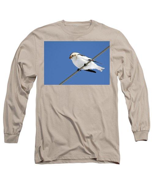 Snow Bunting Long Sleeve T-Shirt by Brook Burling
