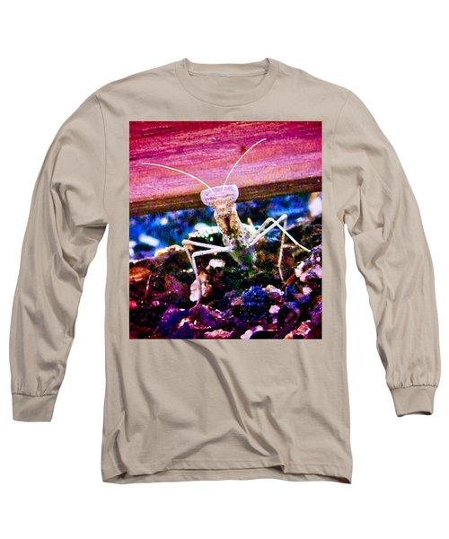 Sonoran Desert Ground Mantis Long Sleeve T-Shirt